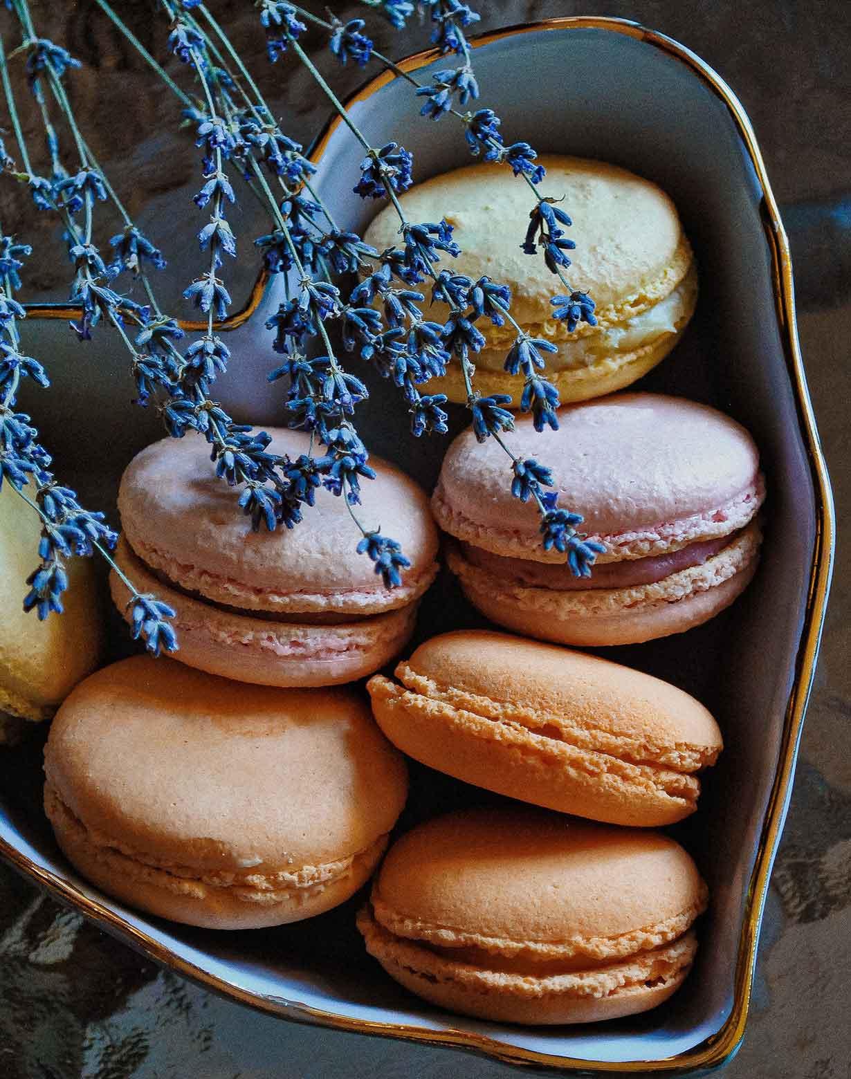 bakery-sample-4